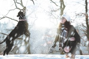 winter pet safety tips