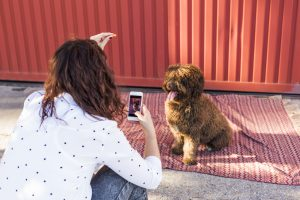 woman-taking-photo-of-dog